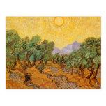 Olivos, cielo amarillo y Sun, Vincent van Gogh Tarjetas Postales