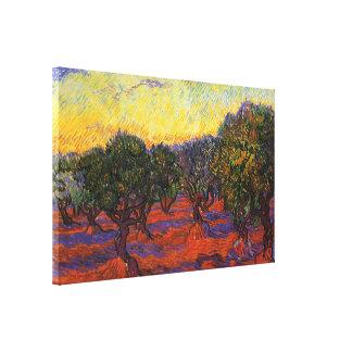 Olivos, cielo anaranjado lona envuelta para galerias