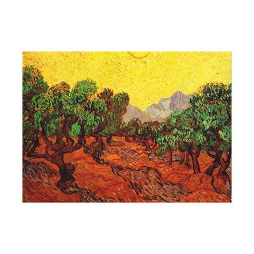 Olivos con el cielo amarillo y Sun, Van Gogh Impresiones En Lienzo Estiradas
