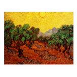 Olivos con el cielo amarillo y Sun Van Gogh Postal