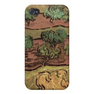 Olivos contra una cuesta de una colina de Van Gogh iPhone 4 Cárcasas