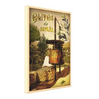 Olivos de España Canvas Print