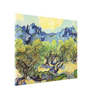 Olivos de Van Gogh, bella arte del vintage