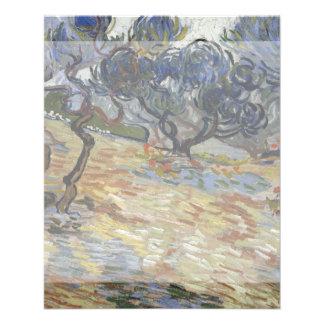 Olivos de Vincent van Gogh Tarjetas Informativas