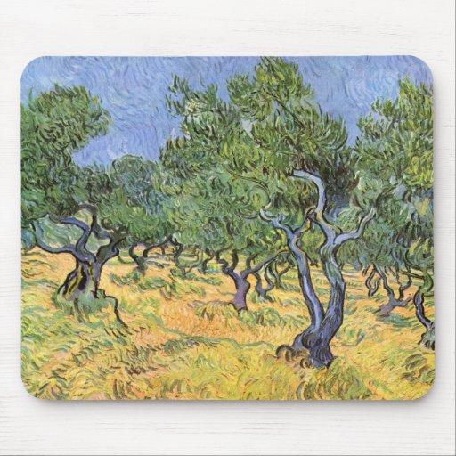 Olivos de Vincent van Gogh Tapetes De Ratón