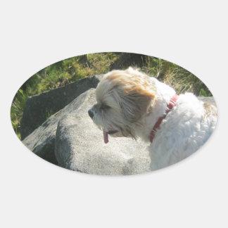 Ollie dog cliff edge oval sticker