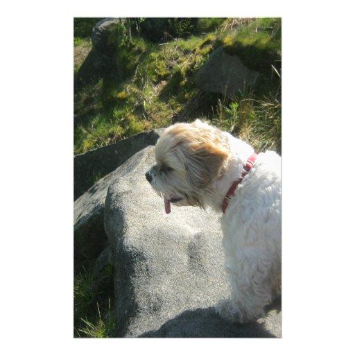 Ollie dog cliff edge stationery