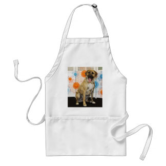 Ollie - Mixed -2 Adult Apron