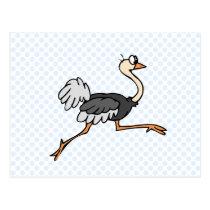 Ollie Ostrich Postcard