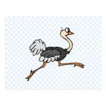 Ollie Ostrich Postcards