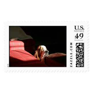 ollie  postage stamp