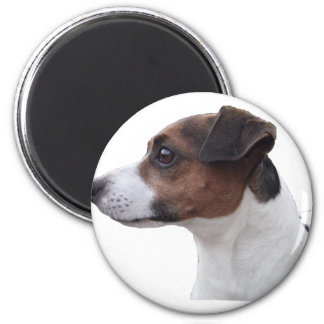 Ollie the Jack Russell 2 Inch Round Magnet