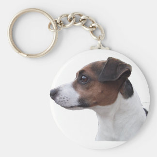 Ollie the Jack Russell Basic Round Button Keychain
