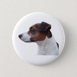 Ollie the Jack Russell Button
