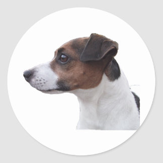 Ollie the Jack Russell Classic Round Sticker