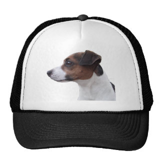 Ollie the Jack Russell Trucker Hat