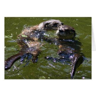 Olly Jolly Otters Card