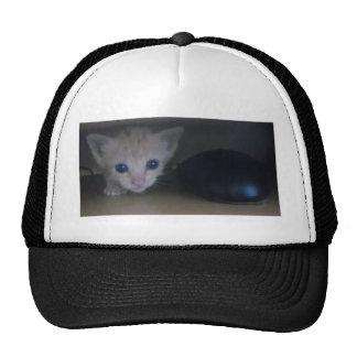 Olly The Kitten Trucker Hats
