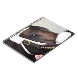 Ollysilverexpress Notebook