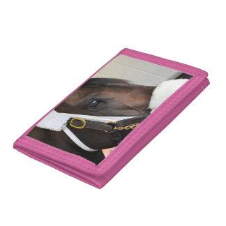 Ollysilverexpress Trifold Wallet