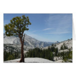 Olmsted Point I at Yosemite National Park Card