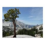 Olmsted Point I at Yosemite National Park Postcard