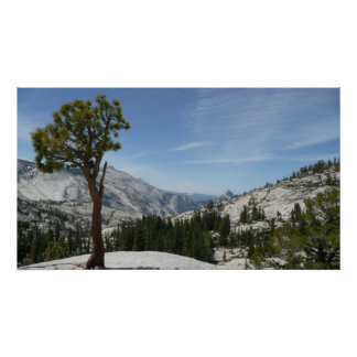 Olmsted Point I at Yosemite National Park Poster
