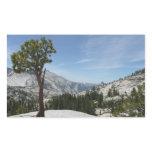 Olmsted Point I at Yosemite National Park Rectangular Sticker