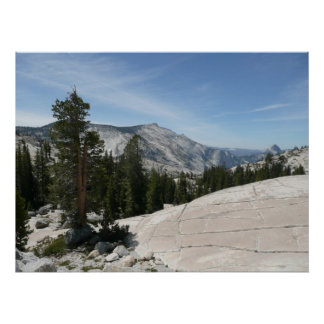 Olmsted Point II from Yosemite National Park Poster