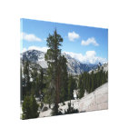 Olmsted Point III in Yosemite National Park Canvas Print