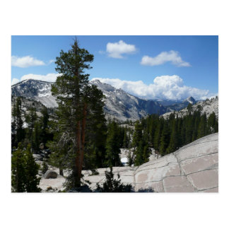 Olmsted Point III in Yosemite National Park Postcard