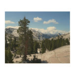 Olmsted Point III in Yosemite National Park Wood Wall Art