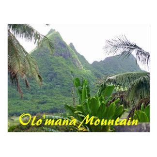 Olomana mountain postcard