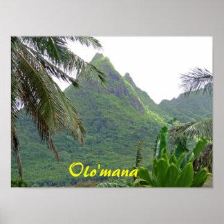Olomana mountains  print