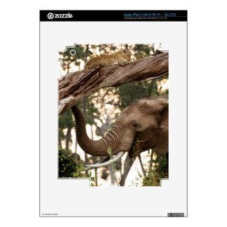 Olor de la prueba del elefante (Loxodonta) del iPad 3 Pegatinas Skins