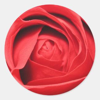 Olor de un color de rosa pegatina redonda