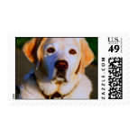 Olson Postage Stamps