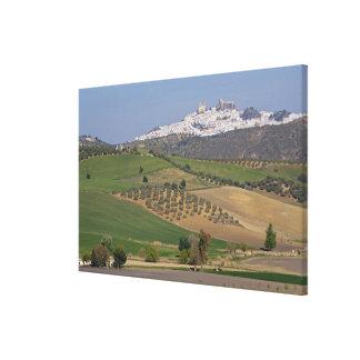 Olvera, Andalusia, Spain Canvas Print
