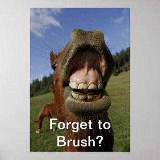 ¿Olvide cepillar? Póster