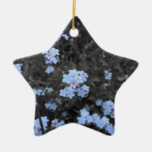 Olvídeme no adorno de cerámica en forma de estrella