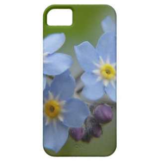 Olvídeme no iPhone 5 Case-Mate protectores
