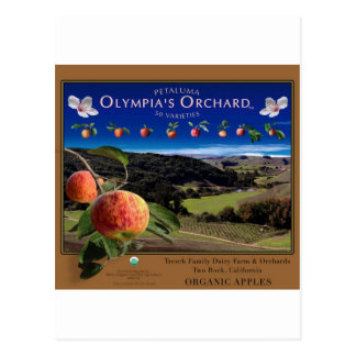 Olympia's Orchard Postcard