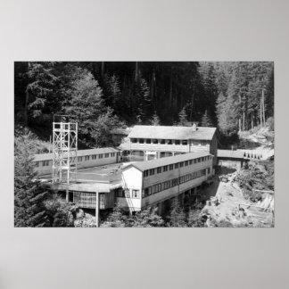 Olympic Hot Springs, WA Lodge View Photograph #1 Print