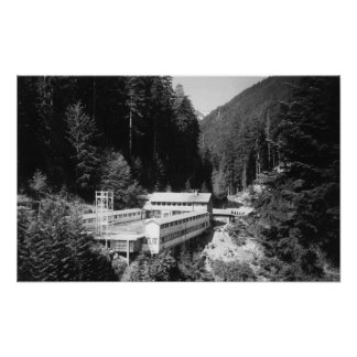 Olympic Hot Springs, WA Lodge View Photograph #2 Print