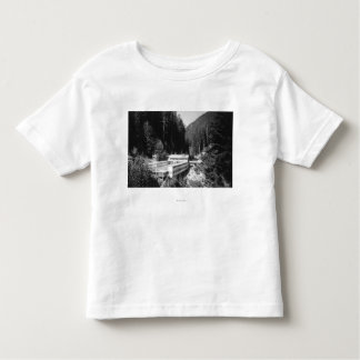 Olympic Hot Springs, WA Lodge View Photograph #2 Toddler T-shirt