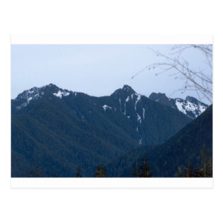 Olympic Mountains Photography Art Design Nature Postcard