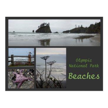 Christmas Themed Olympic N.P. (Beaches 2) Postcard