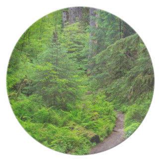 Olympic National Park, Forest trail Plate