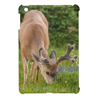 Olympic National Park, Hurricane Ridge 1 iPad Mini Case