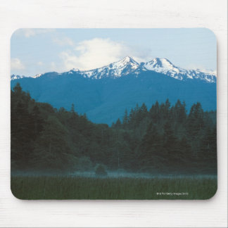 Olympic National Park , Mt. Olympus , Washington Mouse Pad